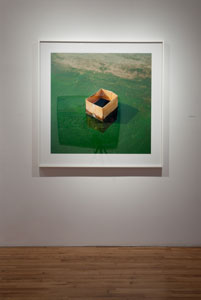 Living Things : Carte grise à Roy Arden, Anthony Hernandez, Everything #19 (cardboard box) (2003-2004)