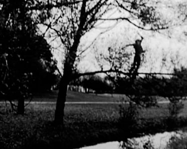 Bas Jan Ader, Fall (organic)