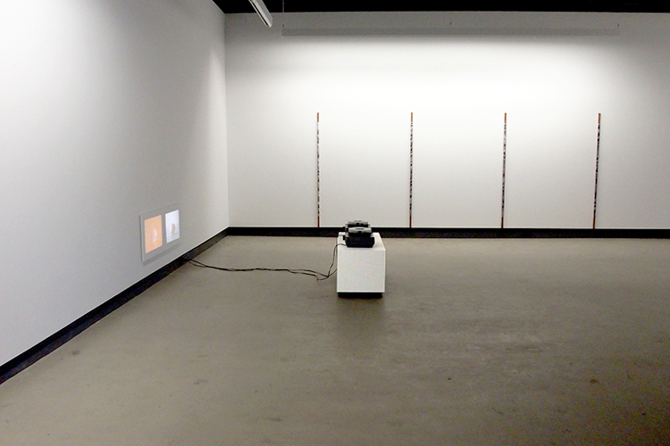 Rotations (2014). Exhibition view